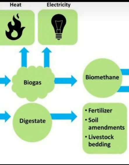 AGRITALK PODCAST; Biogas; invest in a biogas digester…cut energy cost