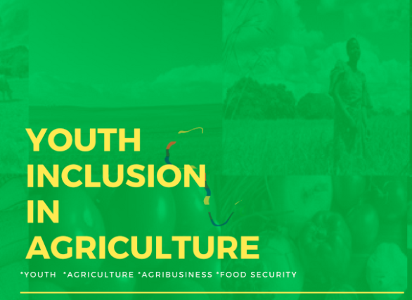 FEEDING AFRICA PODCAST: Youth as Change Agents in Livestock Development